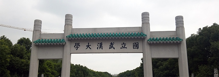 trip-to-wuhan-18
